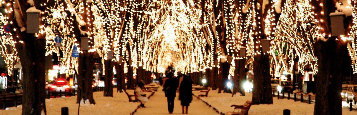 定禅寺通りー冬